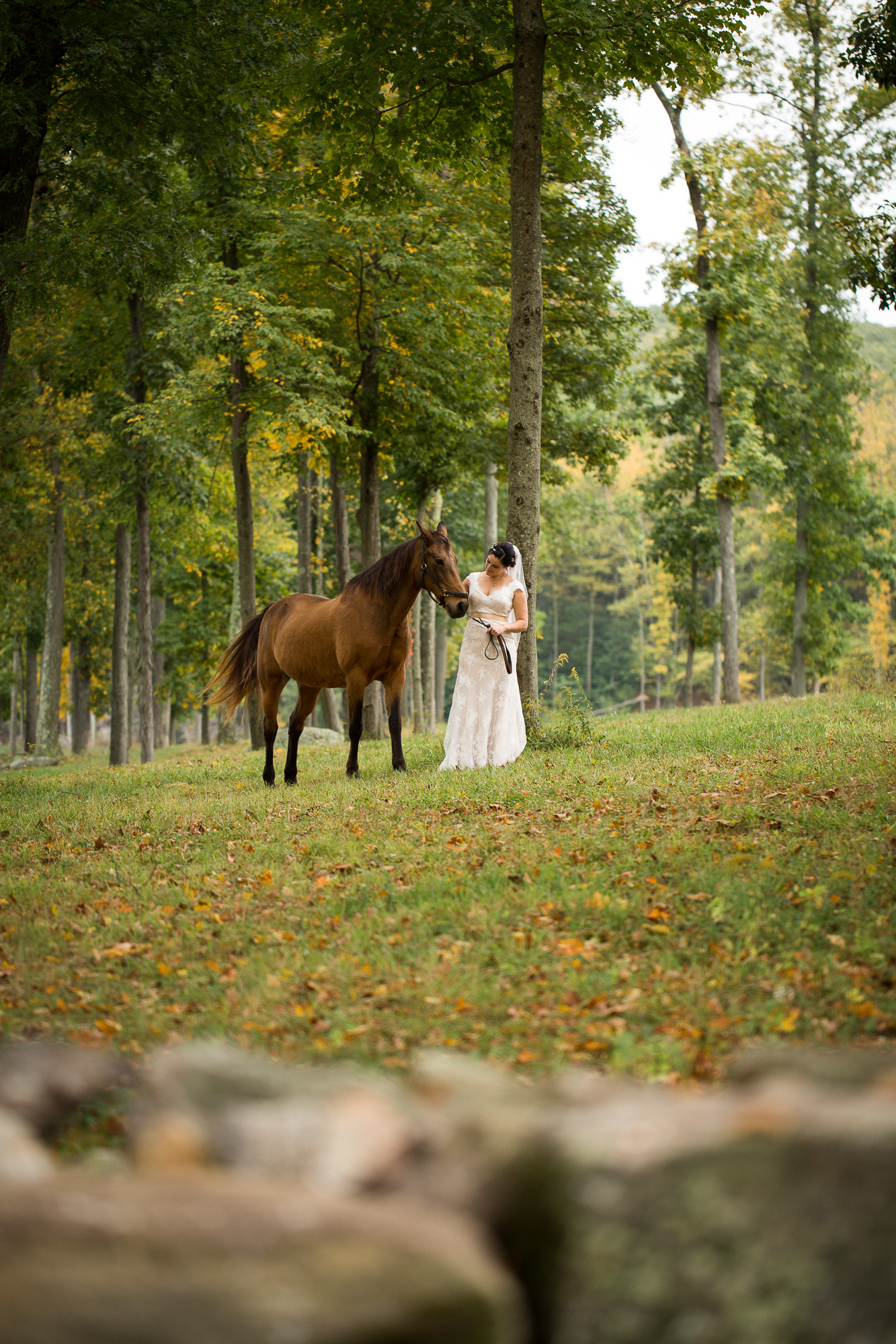 bridal portrait at Candlelight Farms Inn with a horse