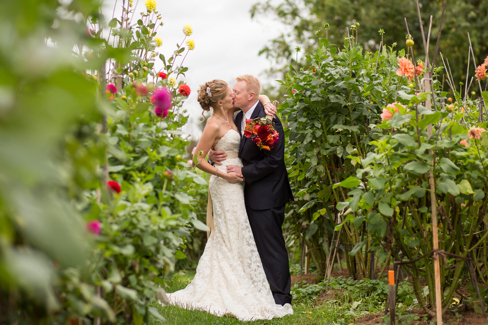 bride and groom kissing in dahlia garden at Woodstock CT