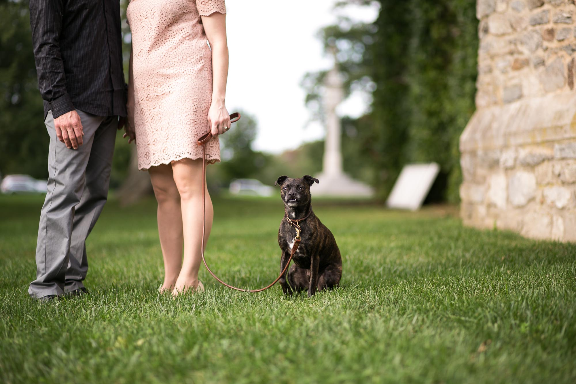 engagement photo with dog in Pomfret, CT Clark Chapel