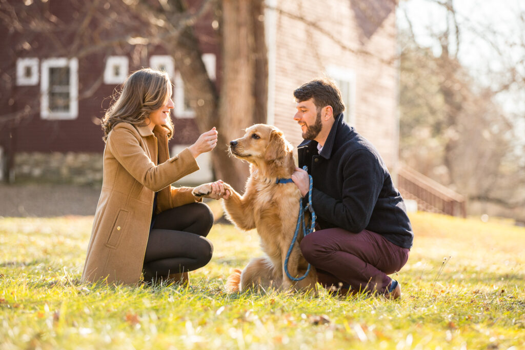 engaged couple with golden retriever engagement session at tyrone farm in pomfret